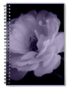 Lavender Perfection Spiral Notebook
