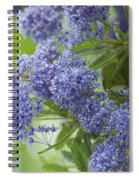 Lavender Pompoms Spiral Notebook