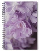 Lavender Purple Roses Rhapsody Spiral Notebook