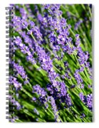 Lavender Square Spiral Notebook