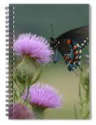 Lavender Thistle And Pipevine Swallowtail Butterfly Spiral Notebook