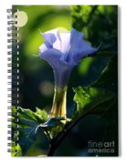 Lavender Trumpet Flower Spiral Notebook
