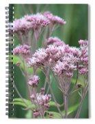 Lavender Wildflower Spiral Notebook