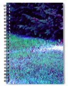Lawn Blue Spiral Notebook