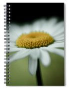 Lay Here Awhile Spiral Notebook