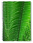 Layered Ferns I Spiral Notebook