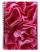 Layers Of Pink Spiral Notebook