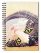 Lazy Kitty Spiral Notebook