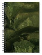 Lazy Sea Lions Spiral Notebook