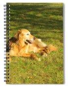 Lazy Summer Afternoon Spiral Notebook
