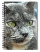Le Petit Chat Spiral Notebook