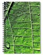 Leaf Abstract - Macro Photography Spiral Notebook