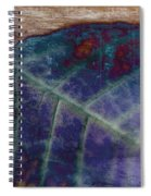Leaf Abstract Spiral Notebook