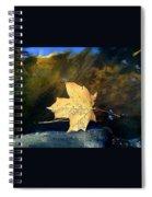 Leaf Afloat Spiral Notebook