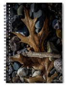 Leaf And Stones Spiral Notebook