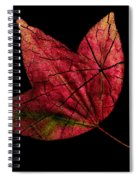 Leaf And Tree Spiral Notebook