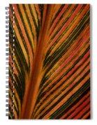 Cannas Plant Leaf Closeup Spiral Notebook