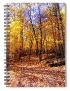 Leaf Covered Trail Spiral Notebook