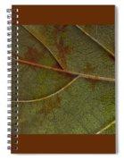 Leaf Design I Spiral Notebook