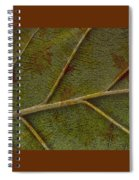 Leaf Design II Spiral Notebook