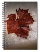 Leaf In Snow Spiral Notebook