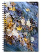 Leaf Island Spiral Notebook