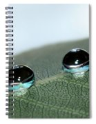 Leaf Jewels Spiral Notebook