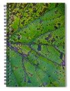 Leaf Macro Spiral Notebook