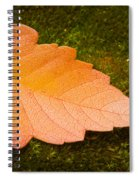 Leaf On Moss Spiral Notebook