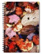 Leaf Patterns 2 Spiral Notebook