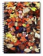 Leaf Patterns 3 Spiral Notebook