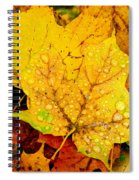 Leaf Portait 1 Spiral Notebook