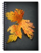 Leaf Portrait Spiral Notebook