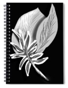 Leaf Ray Spiral Notebook
