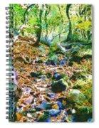 Leaf Stream Spiral Notebook