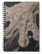 Leaf-tailed Gecko Foot Spiral Notebook