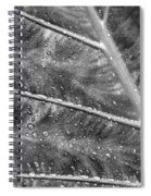 Leaf Venation With Water Beads Spiral Notebook