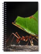 Leafcutter Ant Spiral Notebook