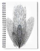 Leafs Spiral Notebook
