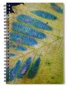 Leafscape 1 Spiral Notebook