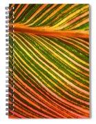 Leafscape 2 Spiral Notebook