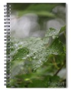 Leafy Raindrops Spiral Notebook