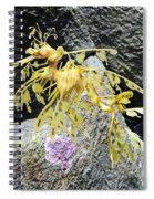 Leafy Seadragon Spiral Notebook