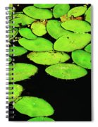 Leafy Swamp Spiral Notebook