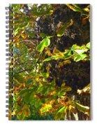 Leafy Tree Bark Image Spiral Notebook