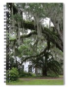 Leaning Live Oak Spiral Notebook