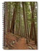 Leaning Over The Trail Spiral Notebook