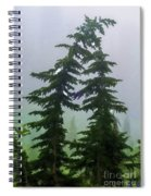 Leaning Trees Spiral Notebook