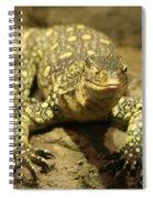 Leapin Lizards Spiral Notebook