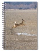 Leaping Spiral Notebook